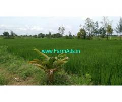 Agriculture farm land for sale 1.25 Acres At Thally