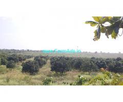 62 Acres Agriculture Land for Sale near Bidar
