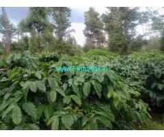 4 acre coffee estate for sale in Sakaleshpura