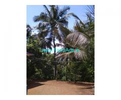 Attappady Kerala. 55 kms from Coimbatore. 30 acres farm land for sale.
