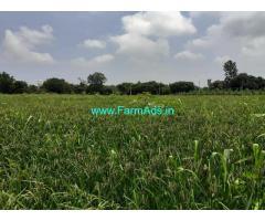 1.30 Acres farm Land for sale at Hadonahalli, Thoobagere, Doddaballapura