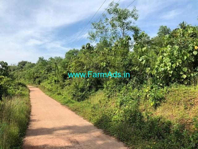 2.37 Acres Agriculture Land for Sale near Uppinangady,Puttur Road