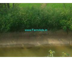 1 Acre Paddy Land for Sale near Kurnool,adjoining K.C Canal