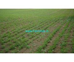 10 Acres Agriculture Land for Sale near Sangreddy