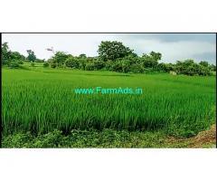 10 Acres Agriculture Land for Sale near Kesamudram