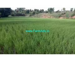 2.5 Acres Farm Land For Sale at Ongole
