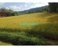 1 acre farm land for sale in sakaleshpura, Beautiful scenic view.
