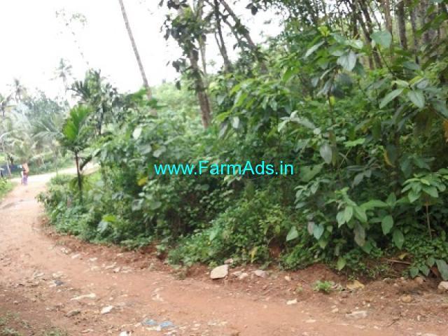 57 cent Agriculture land for sale near Vattapara
