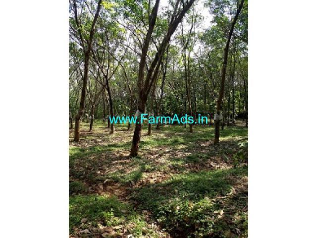 7 Acres Rubber Land for Sale near Thrissur