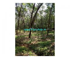 7 Acres Rubber Land for Sale near Thrissur