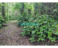 8.5 acre coffee estate for sale in Aldur. Chikkamgaluru.