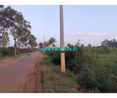 3.30 Acres Farm Land for sale at Hanabe, near Kestur, Kasaba Hobli