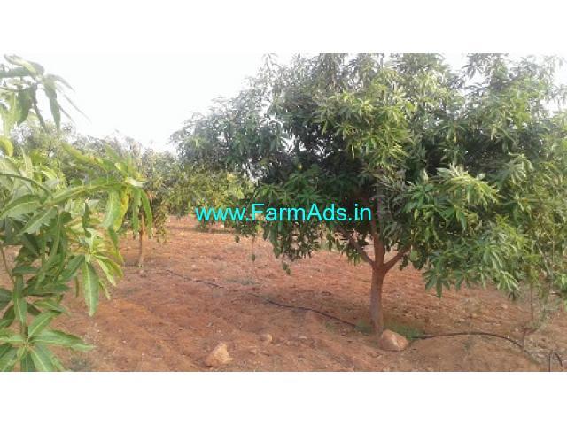 5 Acres Mango Farm for Sale near Jangoan,Srirama Temple