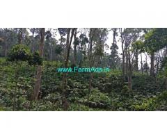 420 Acres Cardamom Plantation for Sale at Idukki