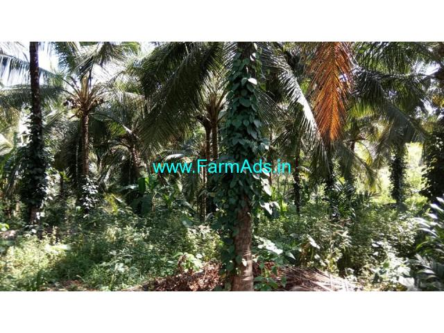 1.30 ACre farm land for sale  Near NH periya Navodaya Kasaragod.