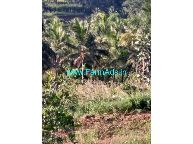 25 acres coconut farm for sale at Attapady, Palakkad