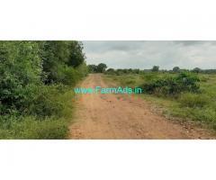 14 Acres Coconut Farm Land for Sale Near Nanjangud Road