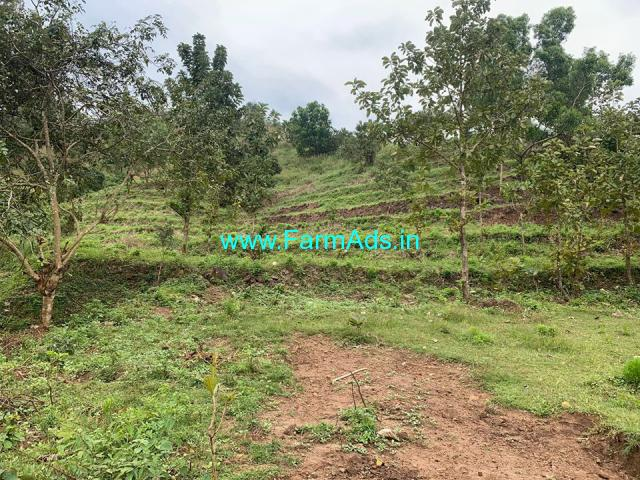 2 acres of farm land for sale in Attappady, Palakkad. in cheap price