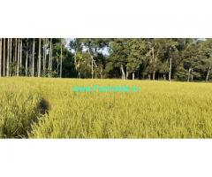 3.5 acre Areca farm land for sale in chikmagalur district