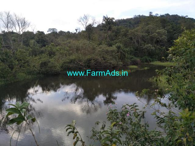 25 acre plain farm land for sale at Mudigere. 16 km from city