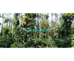 26 Acres Coffee estate for sale Two kms from Aldur, chikkamagaluru