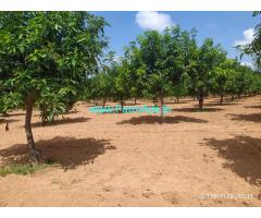6.5 Acer Agriculture Land mango thottta for sale in yadadri bhonigir