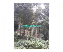 150 Acres Coffee Estate for Sale near Madikeri