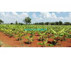 1.75 Acres Agriculture Land for Sale near GauriBidanur
