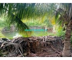 5 Acres coconut farm land for sale at Udumalapetai sub district.
