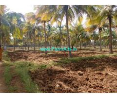 10 Acres Agriculture Land with house for Sale near Madurai