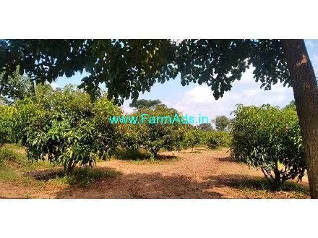 2 Acre Mango Farm For Sale in Bogadhi Gaddige Road