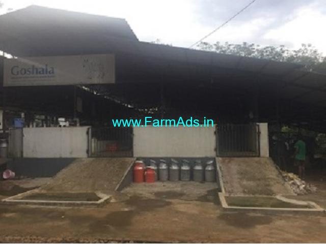 4.28 Acres Land with Dairy Farm for Sale near Kochi