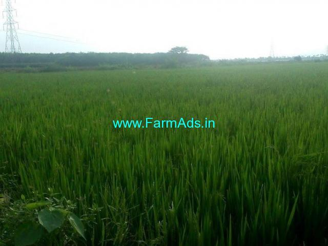 0.5 Acres Agriculture Land for Sale near Nandigama