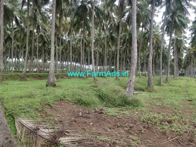 31.7 Acres Coconut farm for Sale near Kinathukadavu