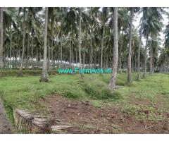 31.7 Acres Coconut farm for Sale near Kinathukadavu