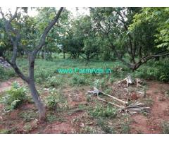 45 Acres Mango Estate for Sale near Gajapathinagaram