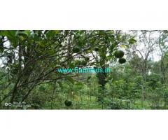 1 Acre Land for Sale near Pachalur