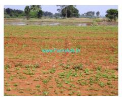 11 Acres Agriculture Land for Sale near Karimnagar