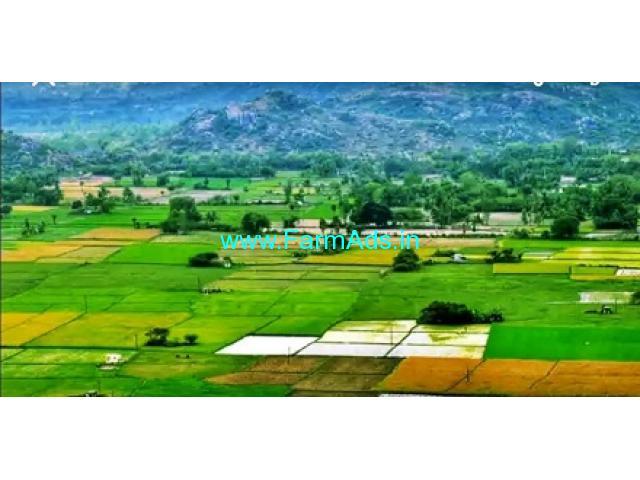 3 Acres Agriculture Land for Sale near Annavaram