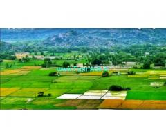 3 Acres Agriculture Land for Sale near Annavaram
