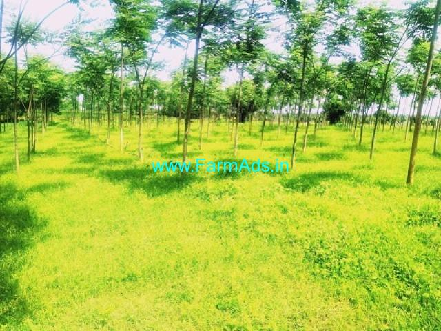 15 Acres Agriculture land for Sale near Siddipet
