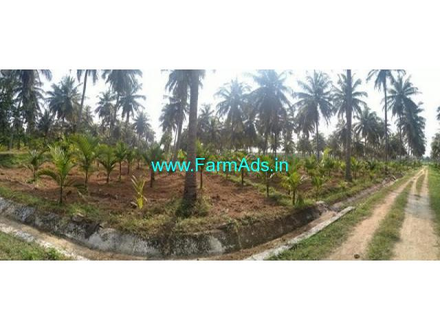 Bhadra Canal irrigated 10 Acres Agriculture Land for Sale near Bhadravathi