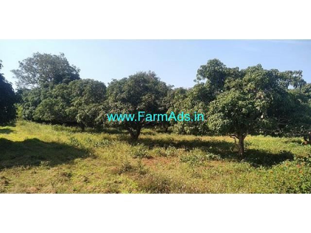 33 Guntas Mango Farm Land for Sale In Bogadhi Gaddige road