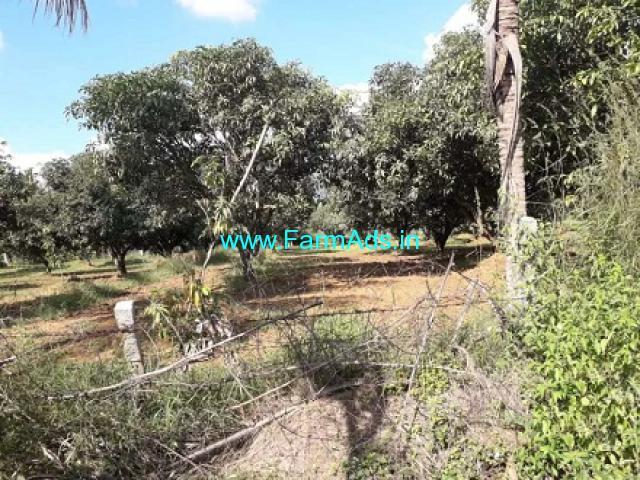 45 Acres Mango Estate for Sale near Nagalapuram,Chennai NH