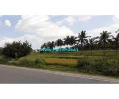 19 Gunta Agriculture Land for Sale on KRS Road