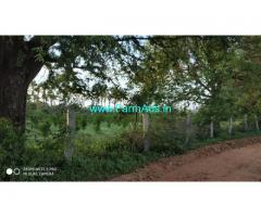 7.15 Acre Agriculture Land for Sale near Pavagada