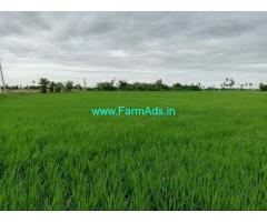 2 Acres Agriculture Land for Sale near Gudivada