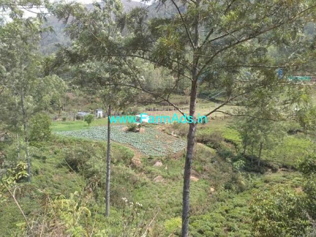 4 Acres Tea Estate for Sale at Kotagiri