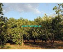 42 Acres Agriculture Land with House for Sale near Thanjavur