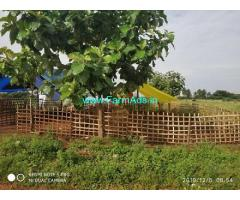 9 Acres Agriculture Land for Sale near Tirunelveli